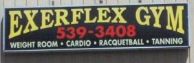Exer-Flex Gym