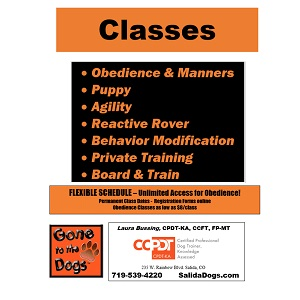 Gone to the Dogs – Classes