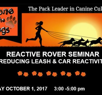 Gone to the Dogs – Reactive Rover – October 1