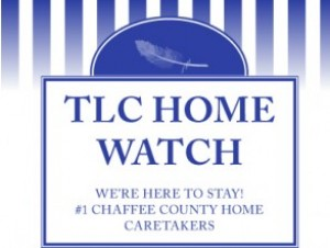 Carried Away Cleaning/TLC Home Watch
